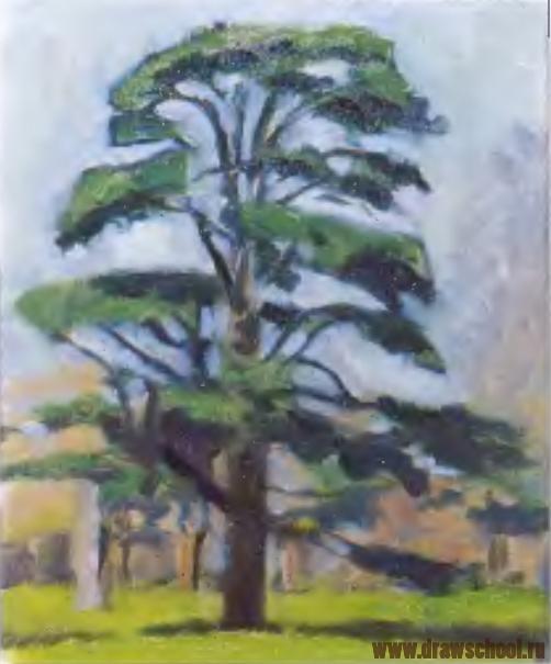 Как рисуют дети дерево